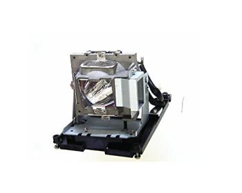 BenQ 5J.J0W05.001 Projector Lamp
