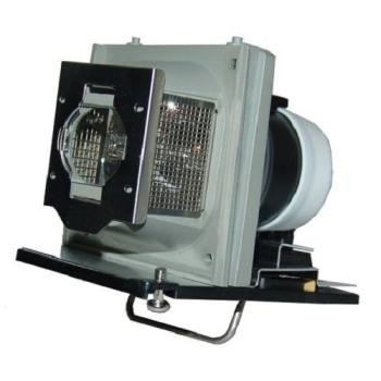 Acer EC.J4800.001 Projector Replacement Lamp