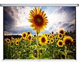 "Anchor ANDMV300 150"" Diagonal Manual Projector Screen"
