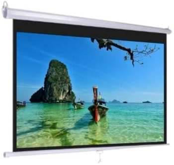 "DM TMS-150 80"" Diagonal Manual Projector Screen"